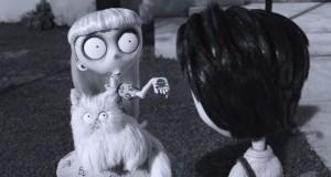 Mr. Whiskers Prophetic Poo