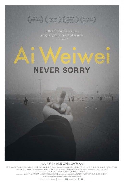 ai_weiwei_never_sorry