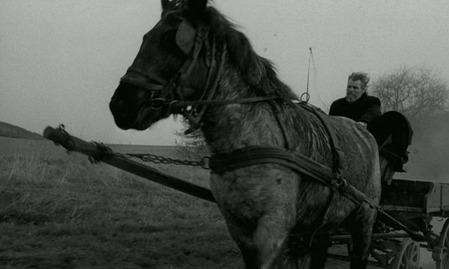 The_Turin_Horse_Best_of_2012