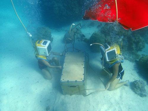 Amazing-Race-22.2-Divers