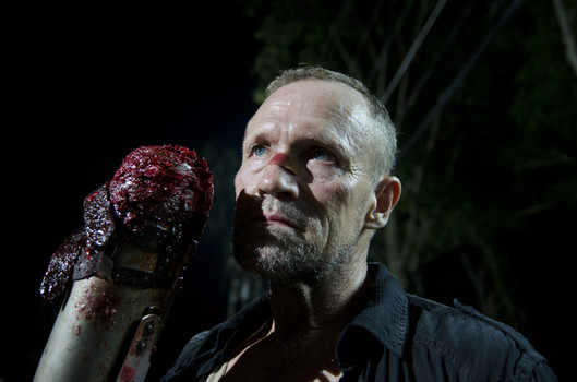 WalkingDeadMerle