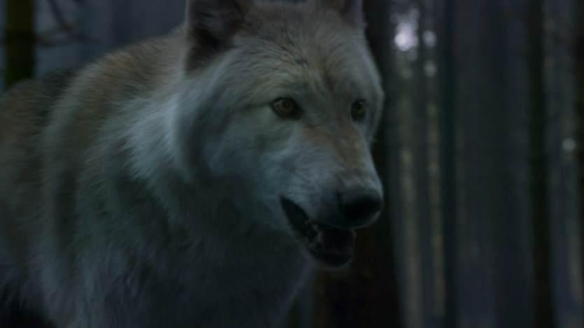 Game-of-Thrones-Season-3-Episode-2-Video-Preview-Dark-Wings-Dark-Words-02-2013-03-31
