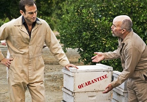 Jason Bateman and Clint Howard in Colony Collapse from Arrested Development season 4