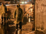 stray-dogs-2013-001-in-wet-anoraks-on-street