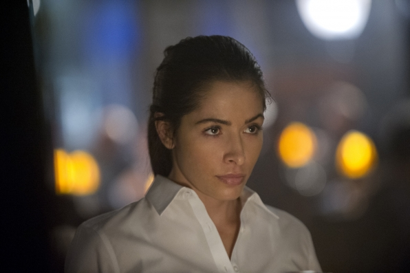 """Person of Interest, Ep. 3.13, """"4C"""" is necessary filler"""