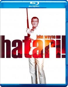 Hatari 1