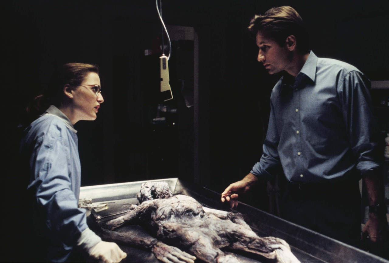Gillian Anderson & David Duchovny in The X-Files Ep 1.01 'Pilot'