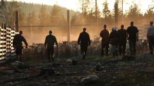aatsinki-the-story-of-arctic-cowboys-500