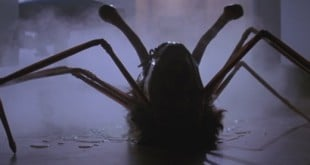 THING spider