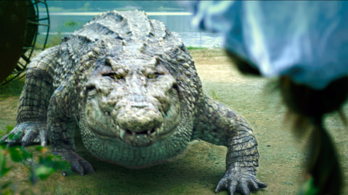 photo-million-dollar-crocodile-2012-1