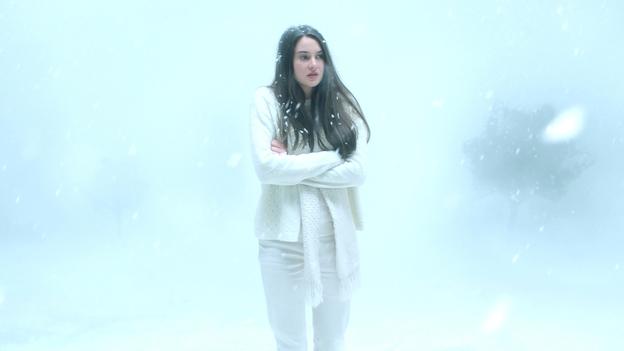 White Bird in a Blizzard (Gregg Araki)