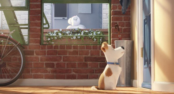 the-secret-life-of-pets-movie-image-2-600x324