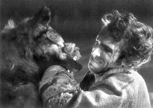 Tiefland Wolf