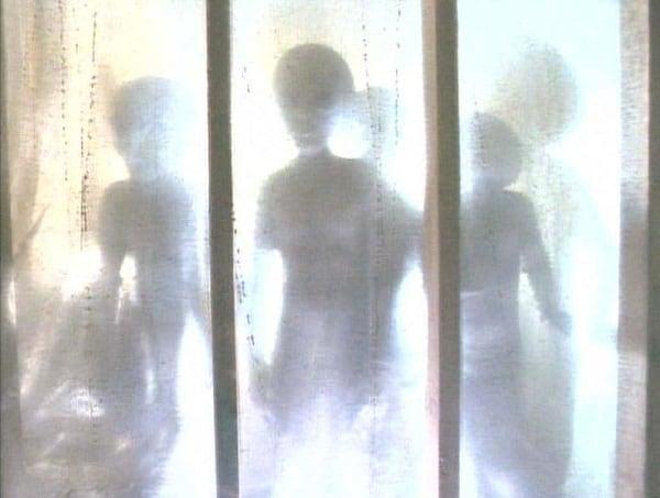 Grey_Aliens_Abduction_Duane_Barry