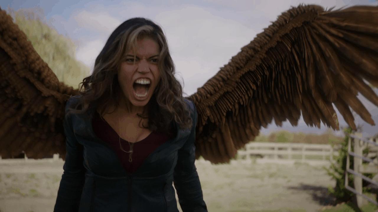 Hawkgirl - TV