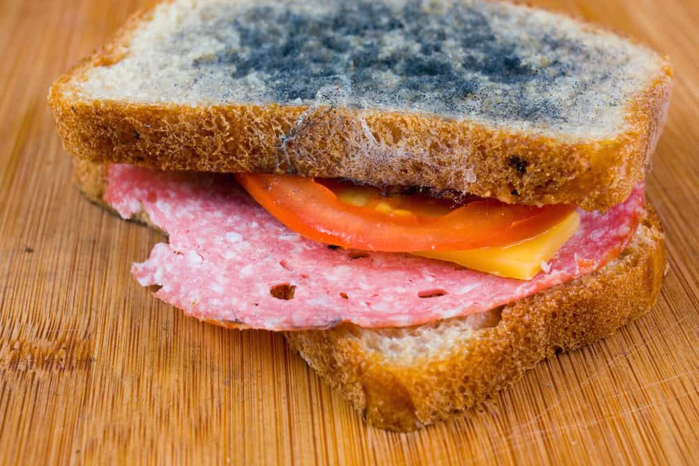 Rotten sandwich eaten by college students in hazing event