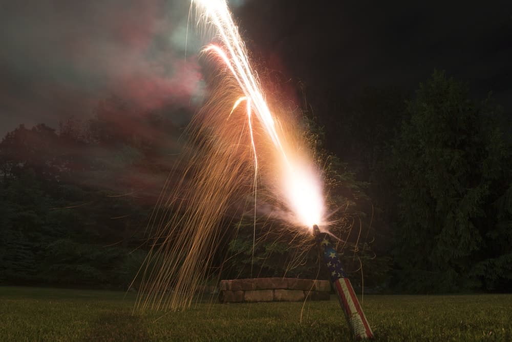 19 Different Types of Fireworks