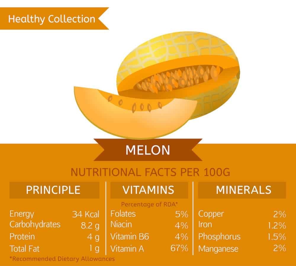 Melon nutrition facts chart