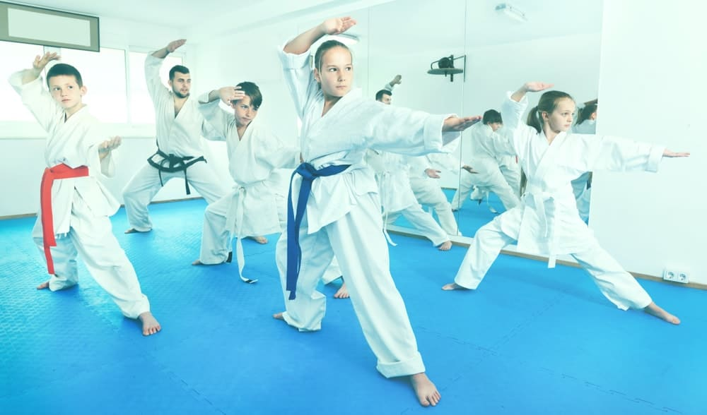 A group of young kids practice their poses during a martial arts class.