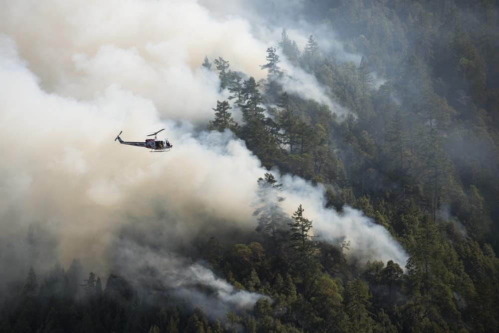 A forest fire is spreading quickly and is contributing to air pollution.