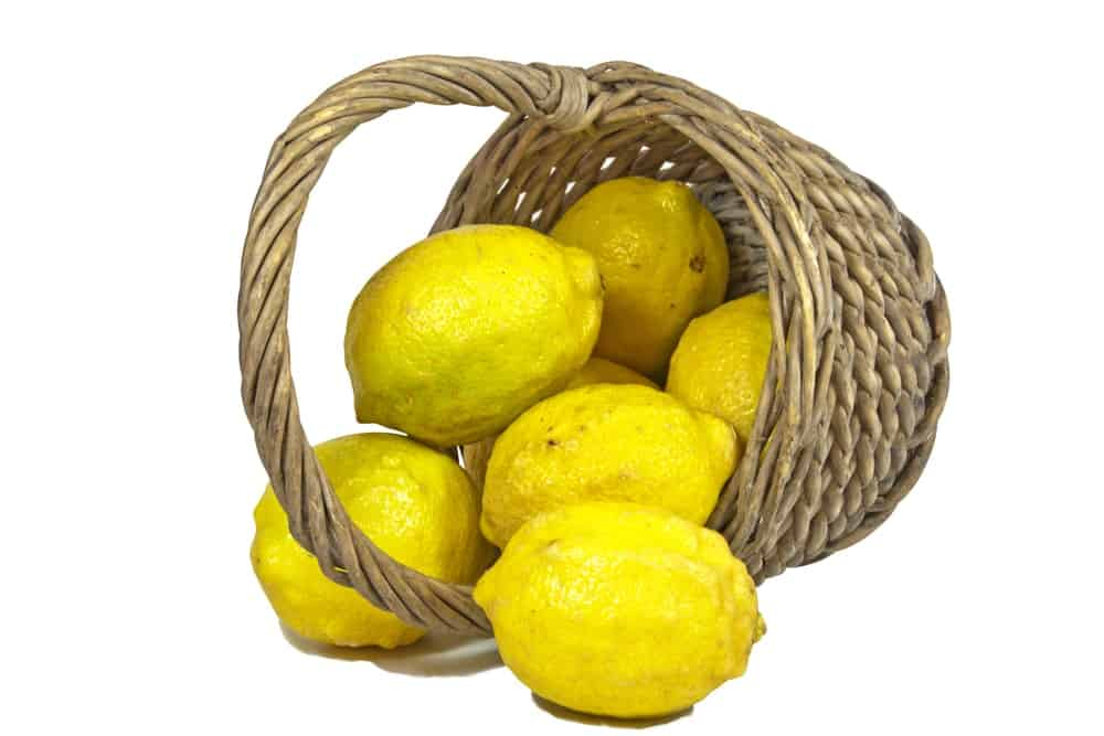 A basket spills over with Eureka lemons.