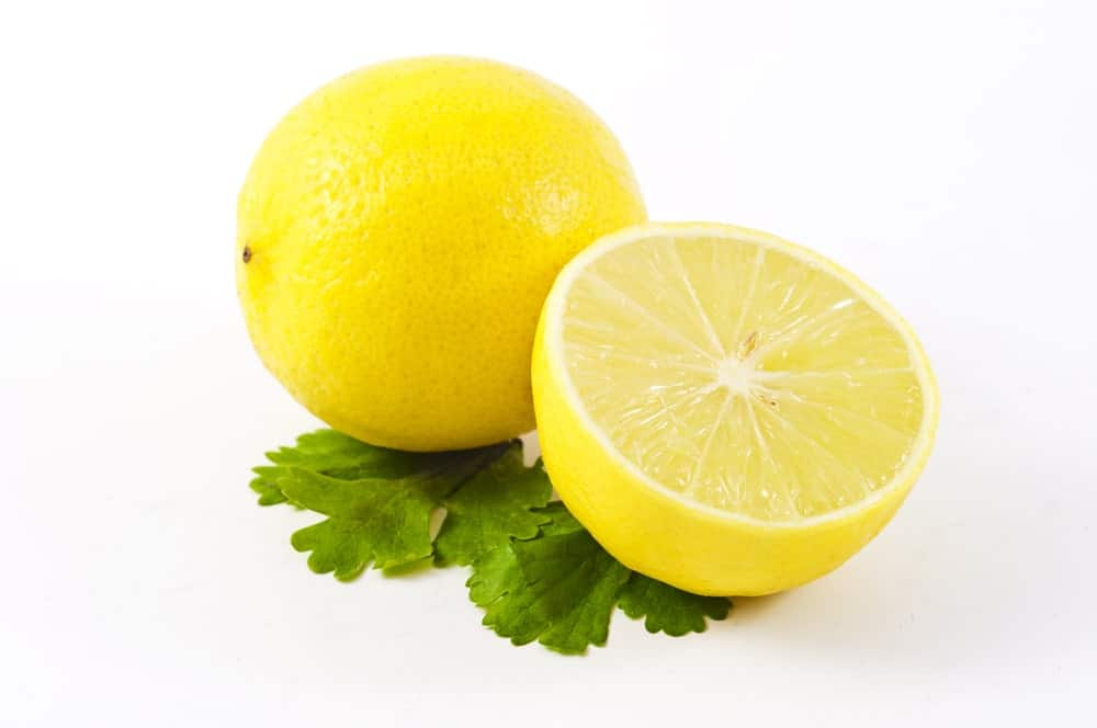 Verna Lemons on white background.