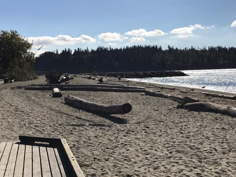 View of Stanley Part from Ambleside Beach in West Vancouver, BC