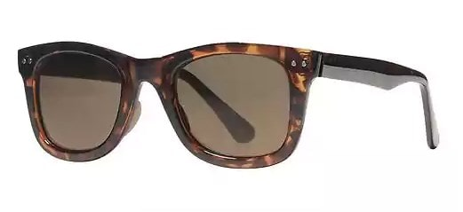 2dcbebb7854 The Banana Republic Tortoise Wayfarers
