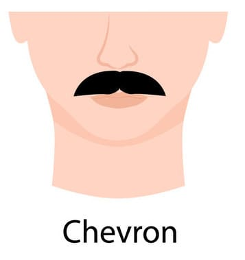 Chevron Moustache