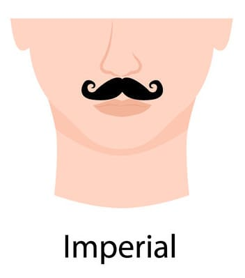 Imperial style moustache