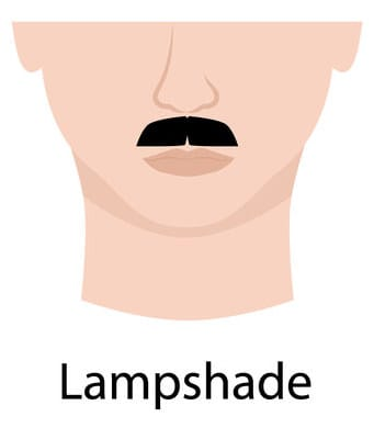 Lampshade moustache