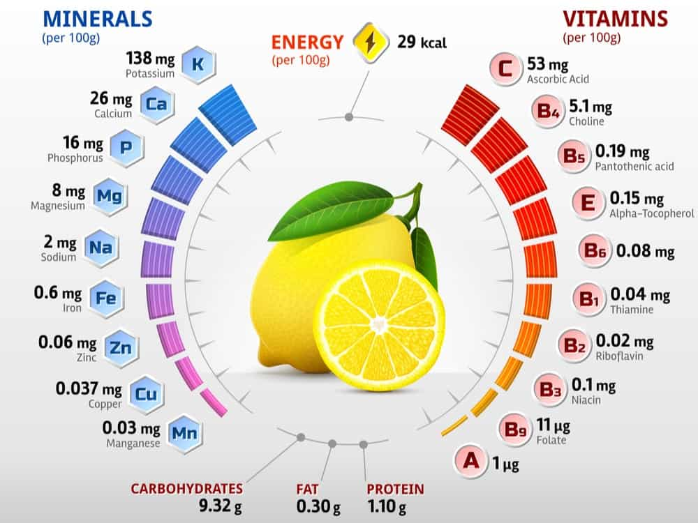 Lemon Nutrition Facts Chart