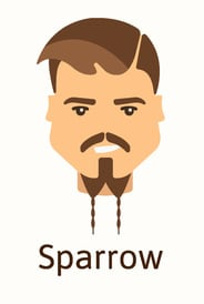 Sparrow beard style