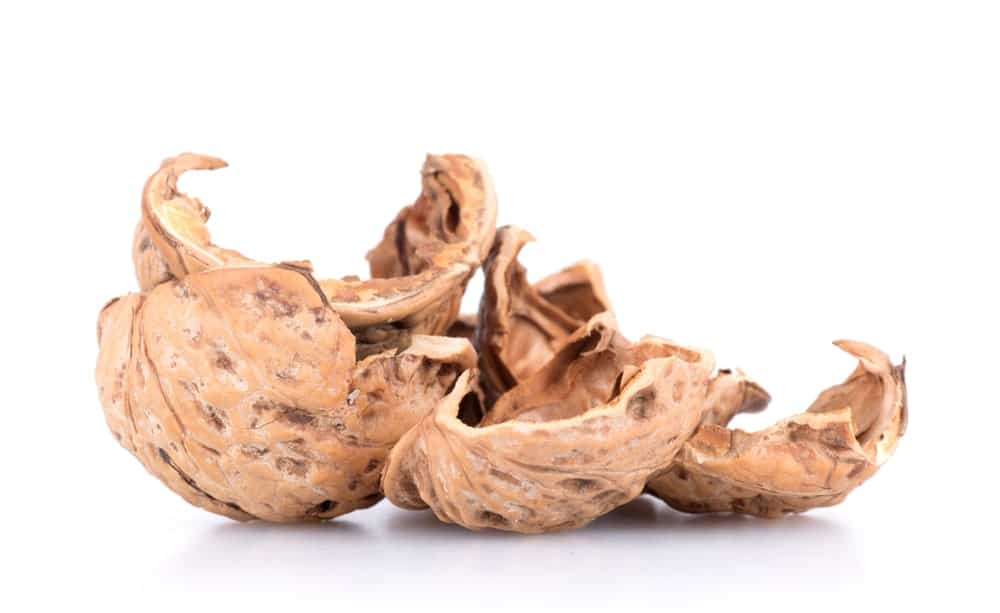 Walnut husk as a chemical free alternative to hair dye