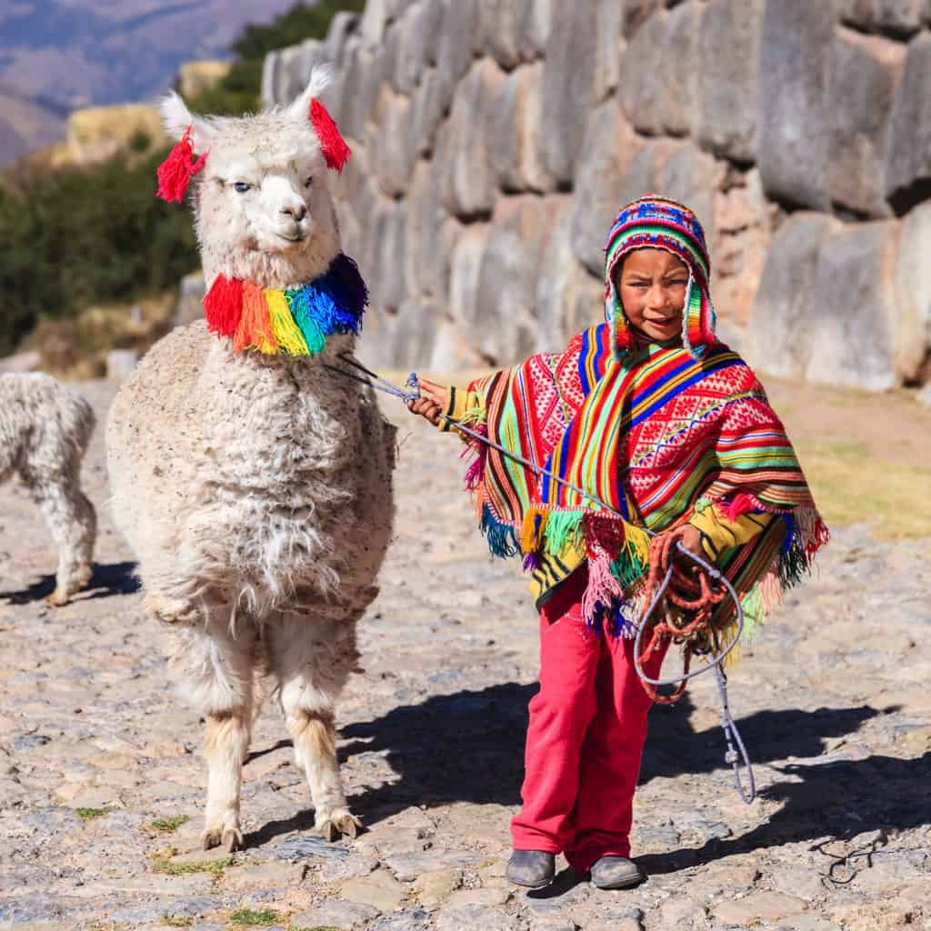 Peruvian boy with a decorated llama.