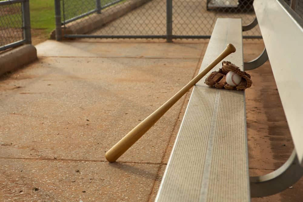 10 Types of Baseball Bats that Rip the Leather Off the Ball