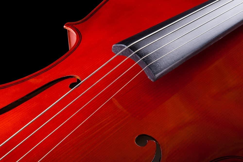 Closeup of cello strings