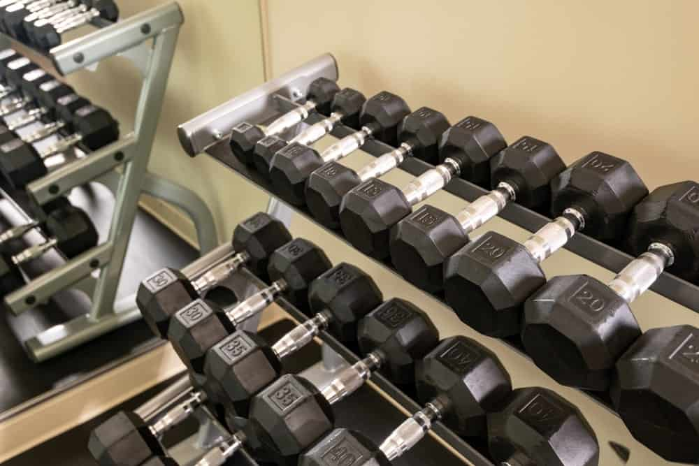 Fixed rubber dumbbells in a gym.