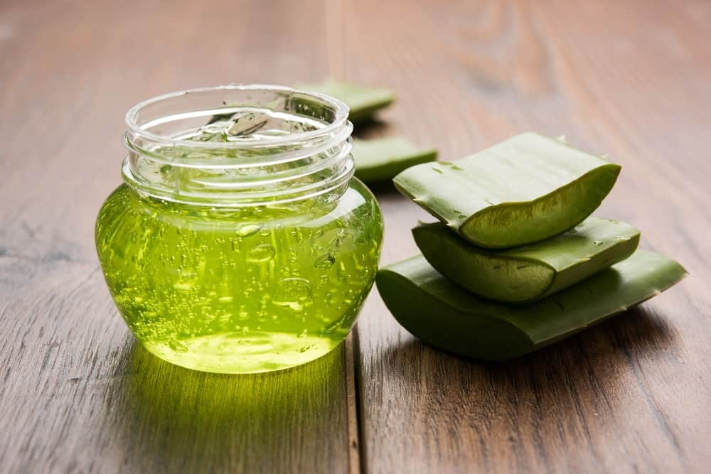Aloe vera hair gel in a small container beside slices of aloe vera.
