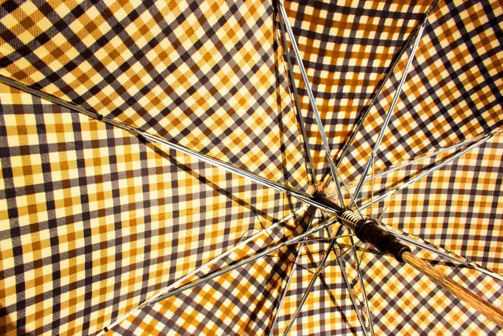 Interior view of an umbrella.