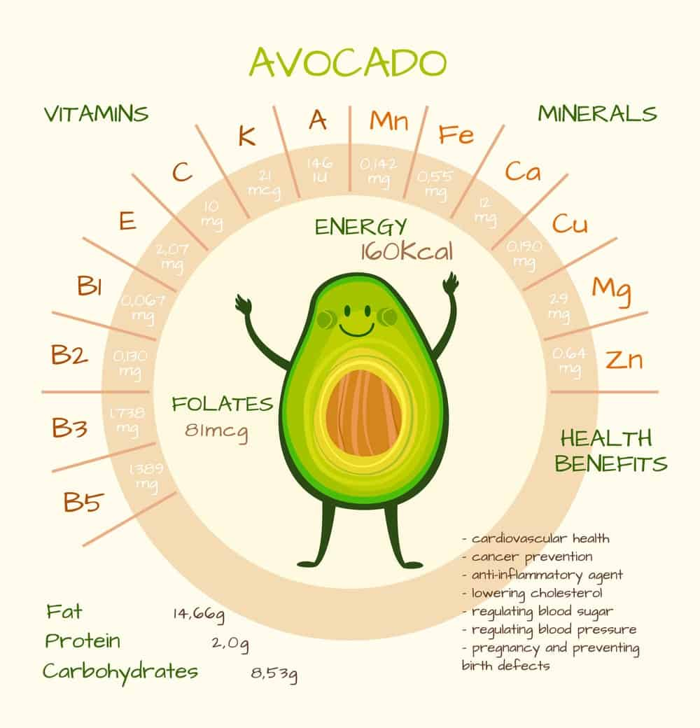 Avocadoes Nutrition Facts Chart