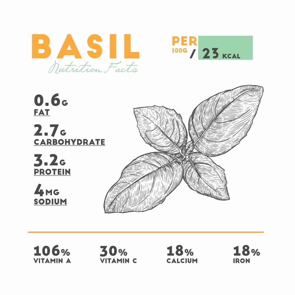 Fresh Basil Nutrition Facts Chart
