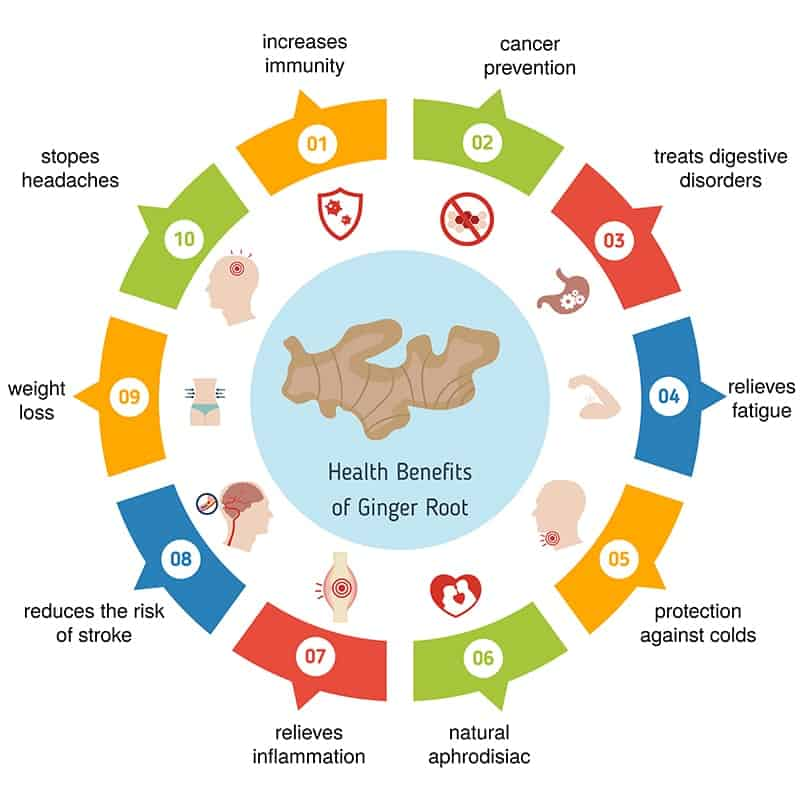 Ginger Nutrition Facts Chart