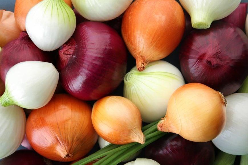 26 Different Types Of Onions Popoptiq