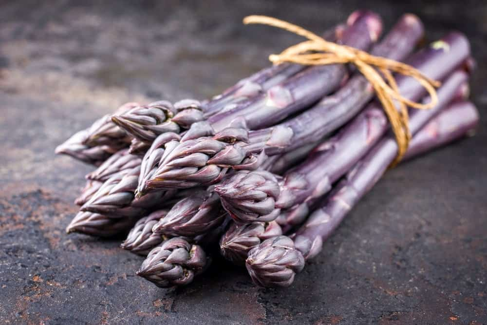 Purple asparagus in a bundle