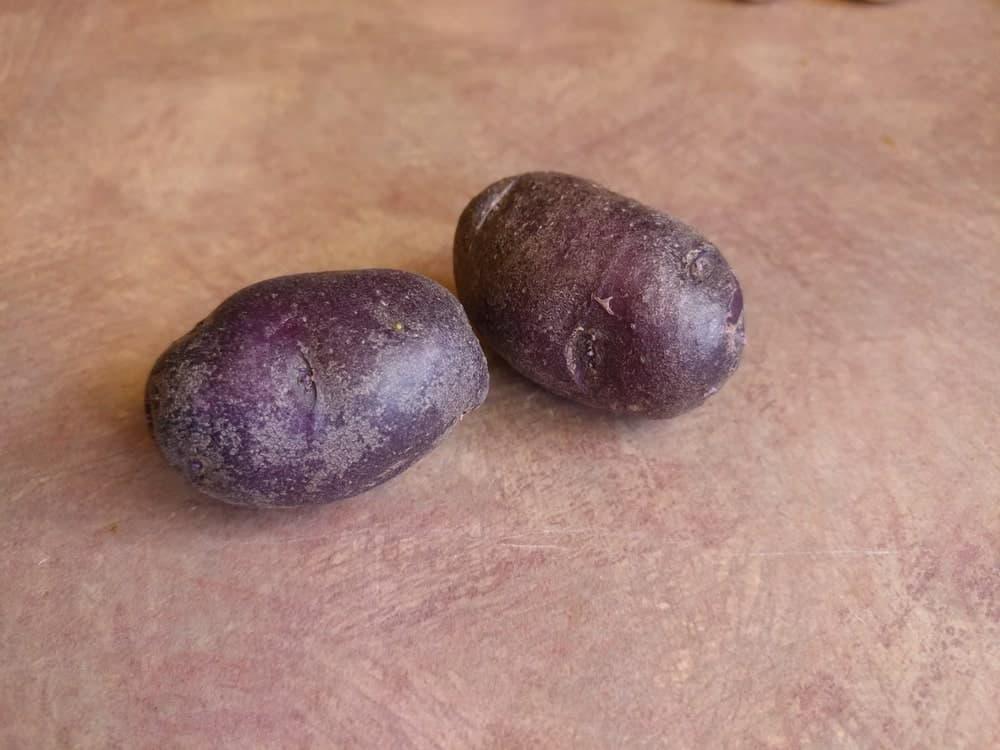 Purple Majesty Potatoes