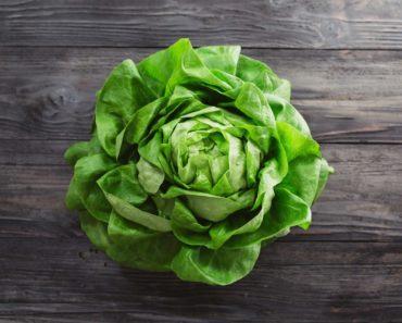 A lettuce head
