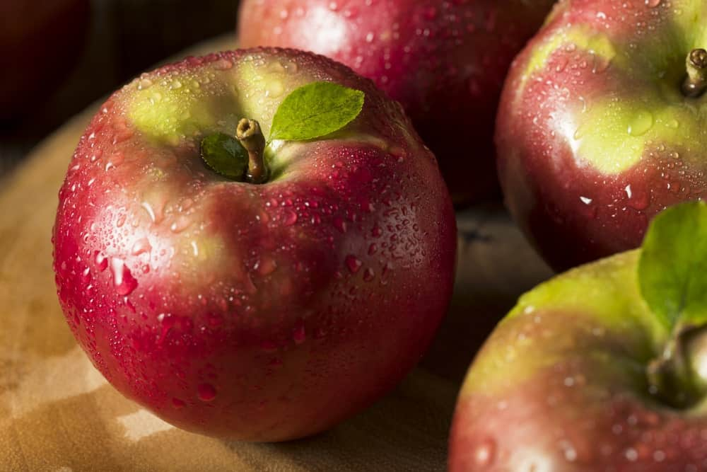 McIntosh Red Apples