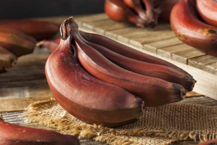 Organic red bananas