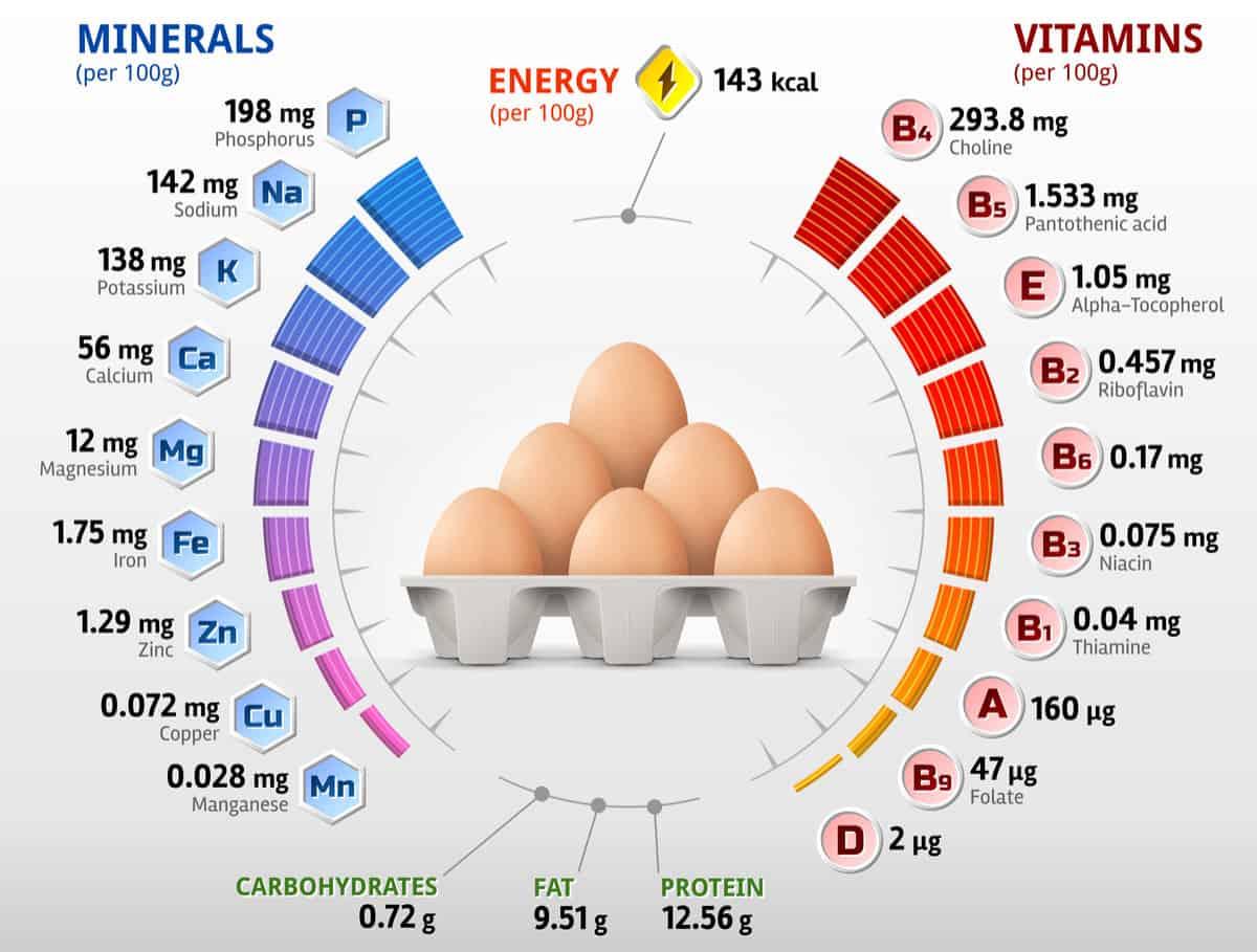 Chicken egg nutrition chart